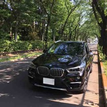 BMW BMW X1 SISAL ライム/ブラック