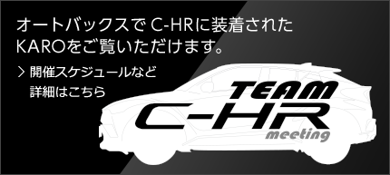 TEAM C-HR meeting